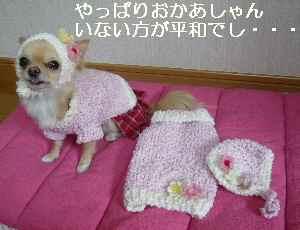 blog209012903.jpg