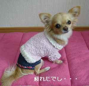 blog209012905.jpg