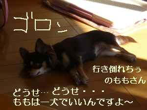 blor2008101608.jpg