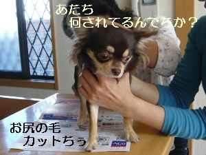 blor2008101609.jpg