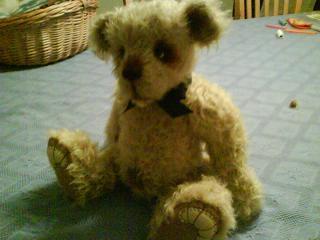 bear 001