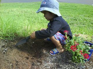 gardening 002