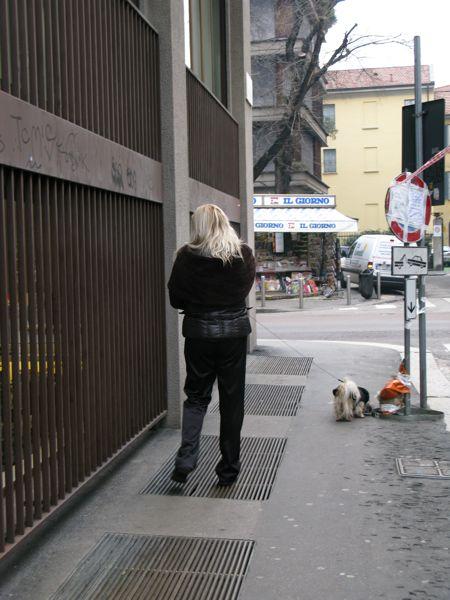 犬ミラノ小型