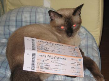 081008 天皇杯チケット