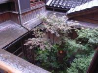 二階から見下ろす坪庭