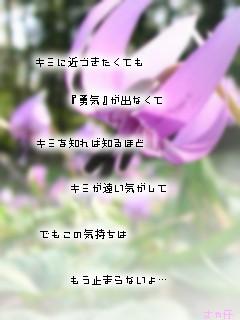 img_1495709_20085367_7.jpg