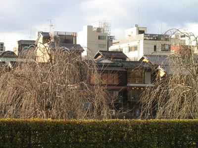 080104四条大橋 (2)