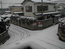 週末の雪景色