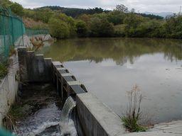 満水の溜池