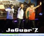 jaguarz.jpg