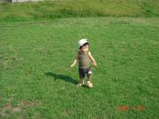 芝生だ~!