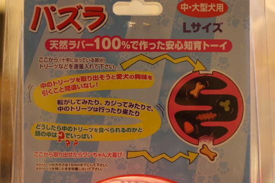 2008_11_20_2758.jpg