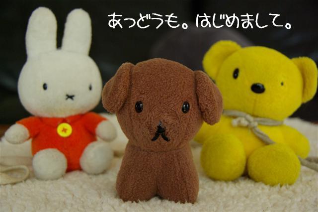 2008.1.9ウサ子 022 (Small)
