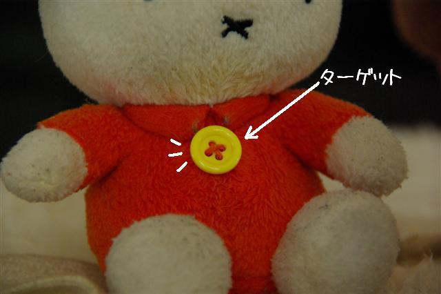 2008.1.9ウサ子 025 (Small)