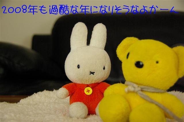 2008.1.9ウサ子 029 (Small)