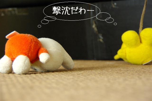 2008.1.9ウサ子 054 (Small)