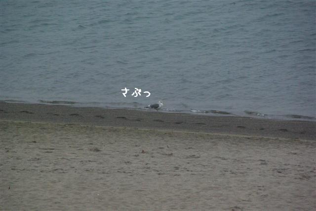 2008ニューイヤーパーティー 062 (Small)