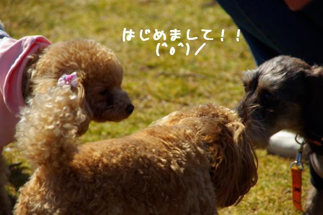 2008.2.21道満 022 (Small)
