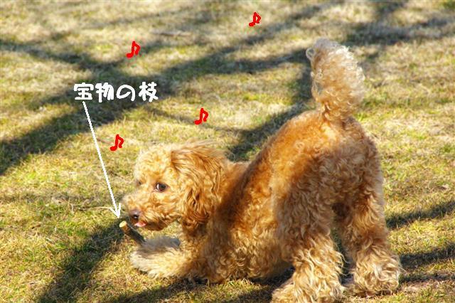2008.2.21道満 076 (Small)