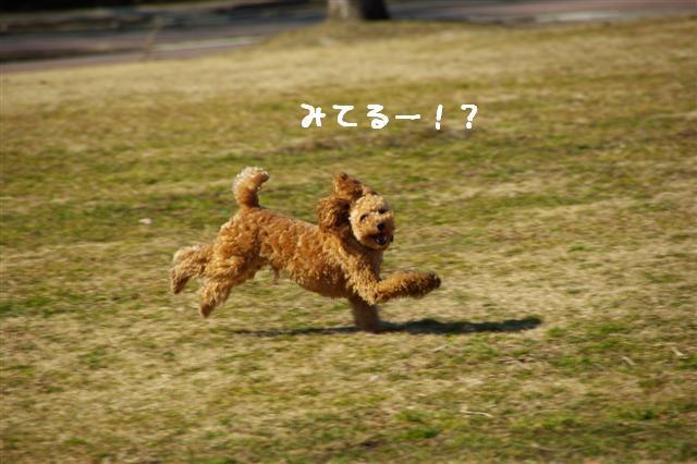 2008.2.21道満 133 (Small)
