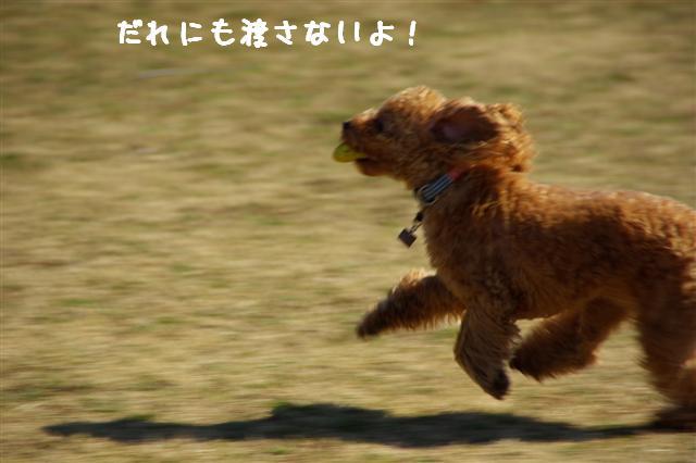 2008.2.21道満 191 (Small)