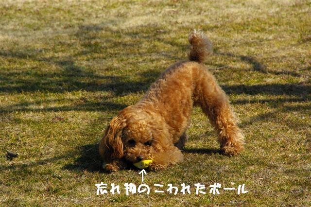 2008.2.21道満 197 (Small)