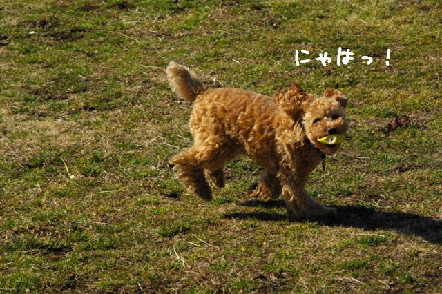 2008.2.21道満 212 (Small)