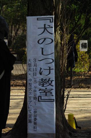2008.3しつけ教室&3.22航空公園 079 (Small)
