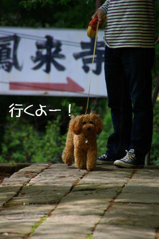 2008.4.18豊橋 068 (Small)