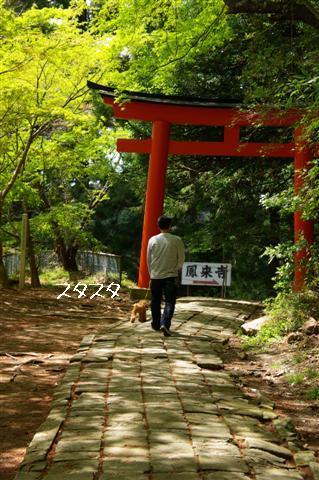 2008.4.18豊橋 007 (Small)