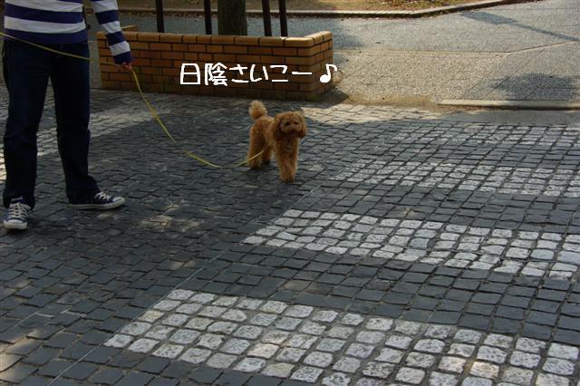 2008.5.1バテバテ散歩 053 (Small)