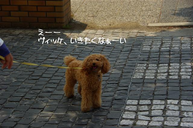 2008.5.1バテバテ散歩 063 (Small)