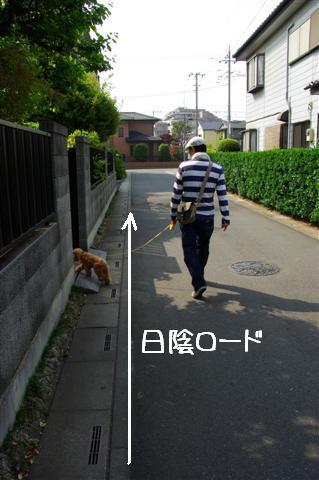 2008.5.1バテバテ散歩 068 (Small)
