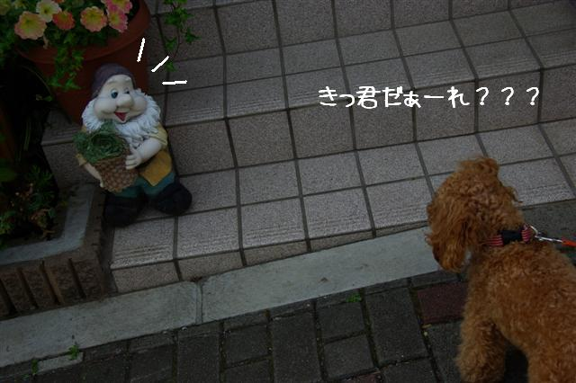 2008.5.1バテバテ散歩 087 (Small)