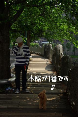 2008.5.1バテバテ散歩 097 (Small)