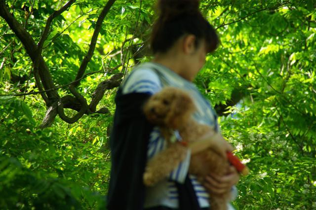 2008.5.3長瀞&柴桜 162 (Small)