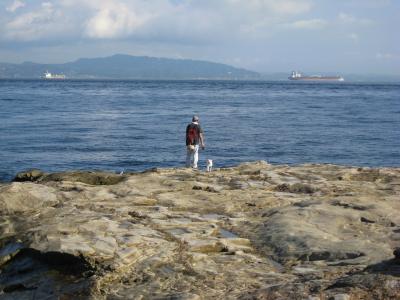 観音埼の海岸