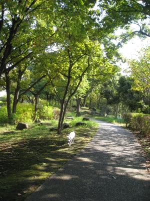 金沢緑地帯