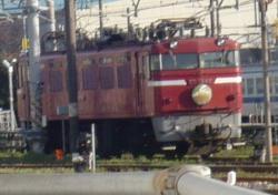 P1030650-2.jpg