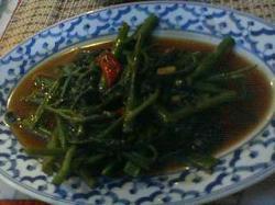 タワンタイ 空芯菜 (2)