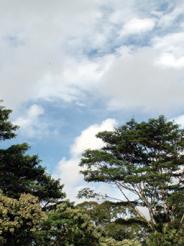 20081216sky.jpg