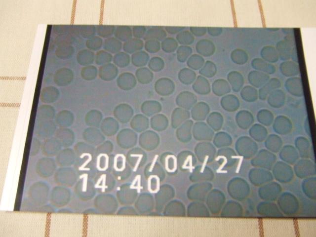 20070427215713.jpg