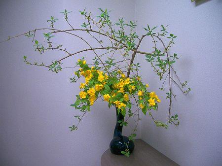春の花 001_450
