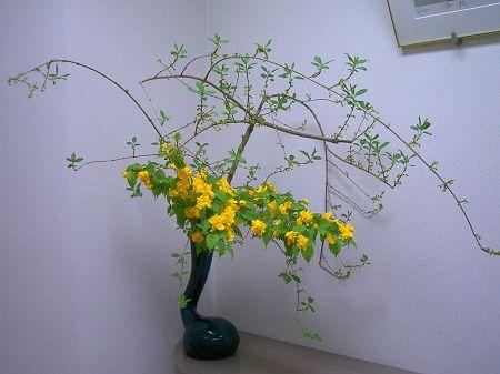 春の花 002_450