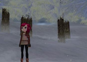 雪が降るs