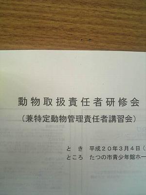 s-Image132.jpg