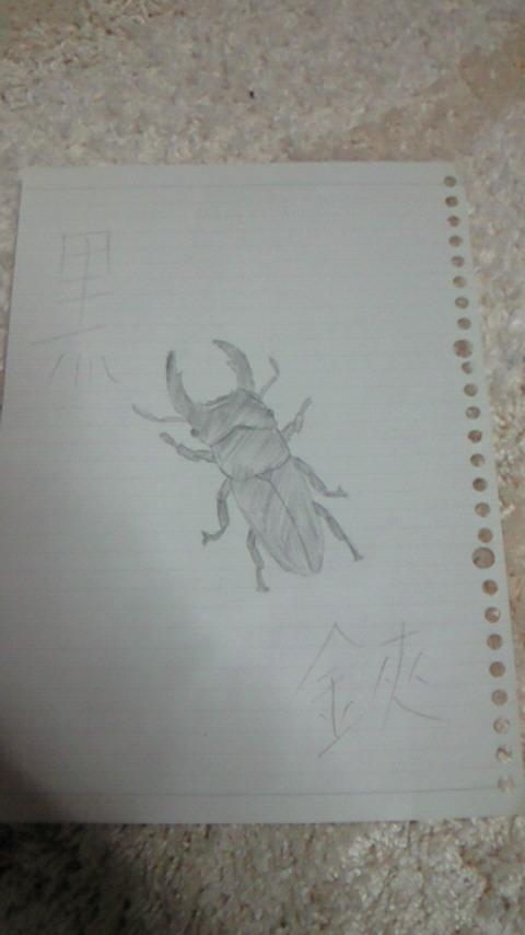 kuwagata.jpg