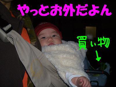 20070403213001.jpg