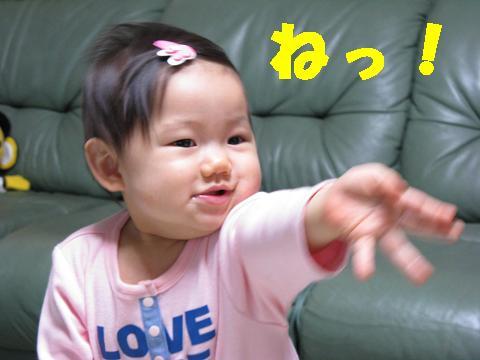 IMG_0582-1.jpg