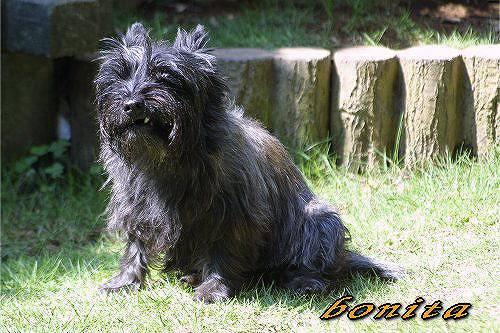 bonita20620.jpg